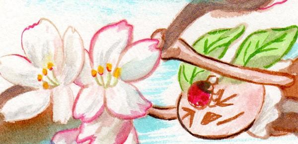 春の嵐と桜とこばけ こばけ小話