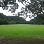 緑地公園広い!